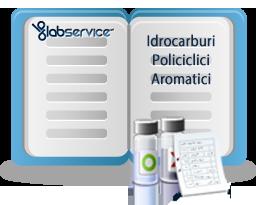 Gli Idrocarburi Policiclici Aromatici